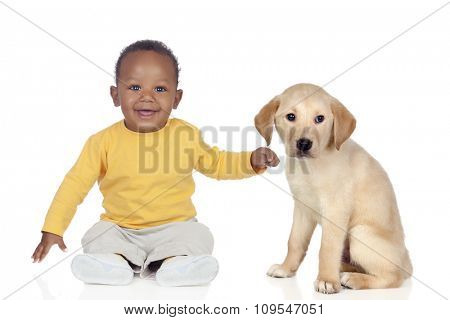 Cute african baby with a nice puppy dog isolated on a white background