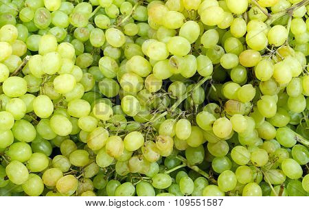 Green Sultana Grapes Background