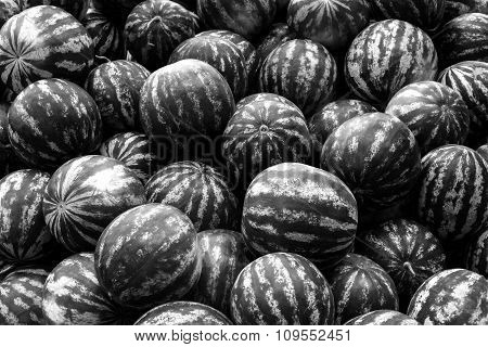 Screensaver From Heap Of Watermelons Black And White