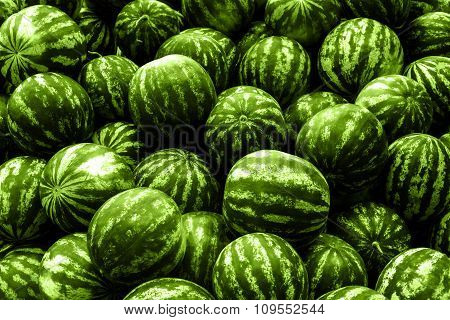 Screensaver From Heap Of Green Watermelons Filtered