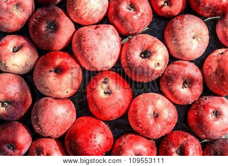 Vivid Freshly Picked Red Apples Close Up Background With Contrasting Shadows