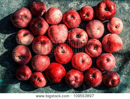 Vivid Freshly Picked Red Apples With Contrasting Shadows On The Old Metal Table