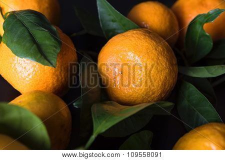 Fresh mandarines with leaves