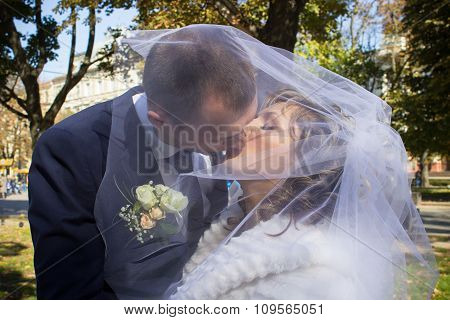 Couple Kissing Under The Veil