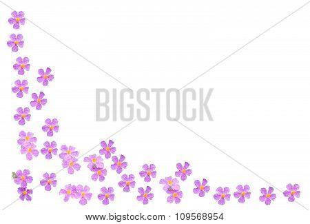 Flower margin design element