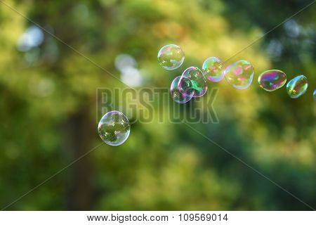 Soap bubbles outdoor