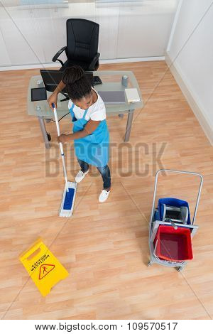 Woman Cleaning Hardwood Floor With Mop