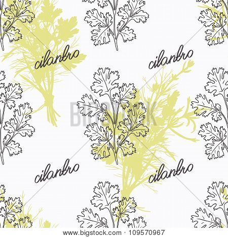 Hand drawn cilantro branch and handwritten sign. Spicy herbs seamless pattern. Doodle kitchen backgr