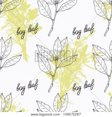 Hand drawn bay leaf branch and handwritten sign. Spicy herbs seamless pattern. Doodle kitchen backgr
