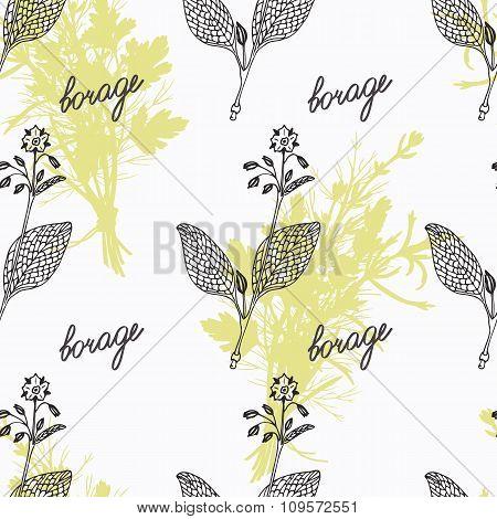 Hand drawn borage branch, flowers and handwritten sign. Spicy herbs seamless pattern. Doodle kitchen