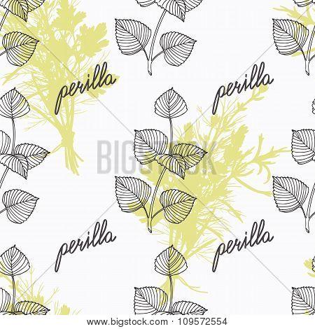 Hand drawn perilla herb branch and handwritten sign. Spicy herbs seamless pattern. Doodle kitchen ba