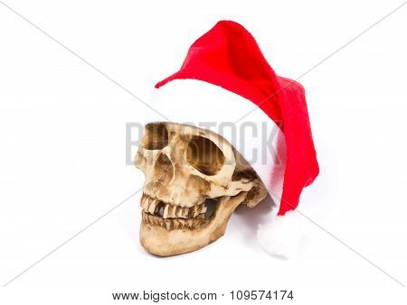 Funny  Skull In Hat Santa Claus Isolated On White Background.