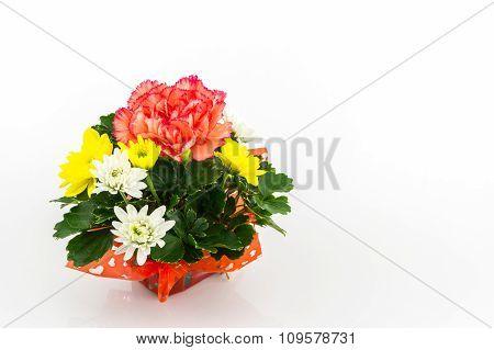 Bouquet Carnation And Chrysanthemum Flowe.