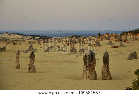 Pinnacle Desert Landscape at Dusk: Western Australia