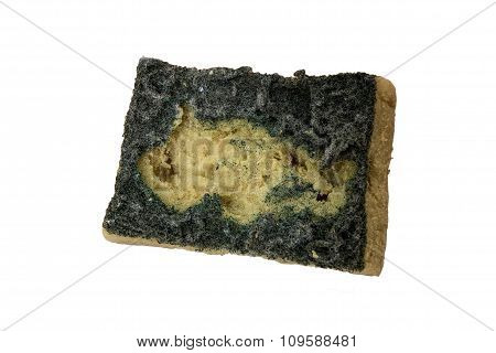Old dirty multi-purpose sponge, isolated on white background