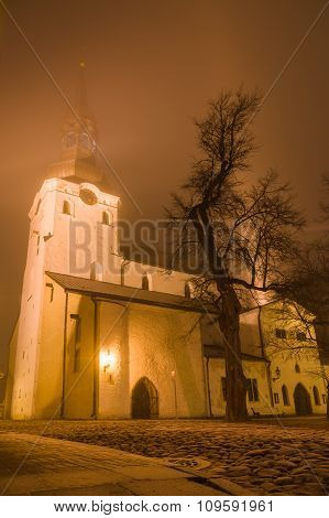 St Mary's Cathedral (dome Church) On Frosty Misty Night, Tallinn, Estonia