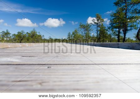 Blurred Closeup Image Of Wooden Boardwalk, Trees And Sky On Background