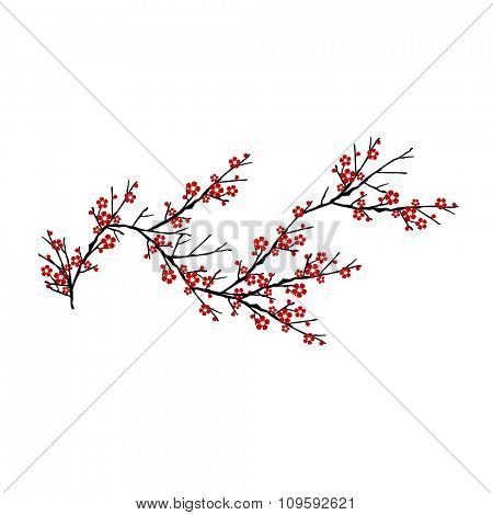 cherry tree isolated on white background