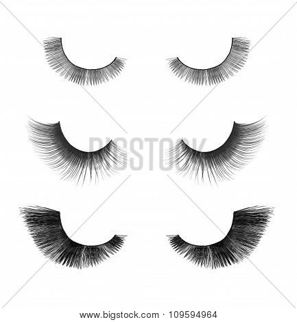 Collection Close Up False Eyelashes On An Isolated White Background