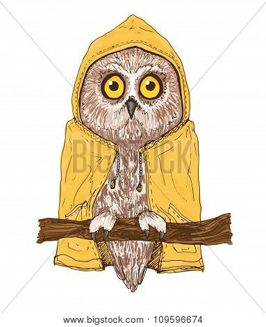 Colorful brown owl in bright yellow raincoat.