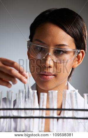 Scientist Examining Rack Of Test Tubes