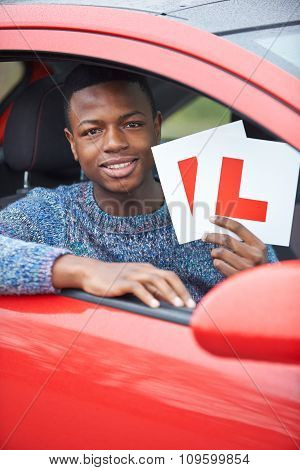 Teenage Boy Passing Driving Test
