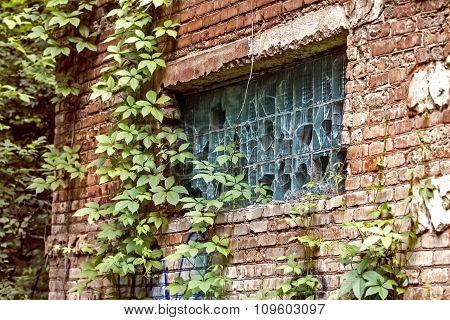 Broken Window In Brick Building