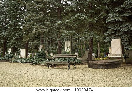 Old Bench In Cemetery