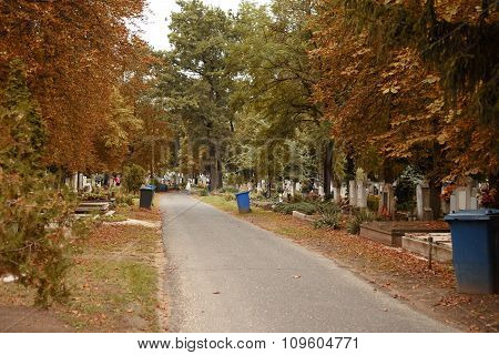 Pathway In Cemetery An Autumn Day