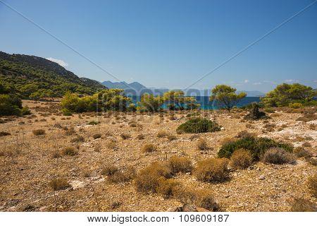 Sea Shore Of The Island Moni, Saronida, Greece