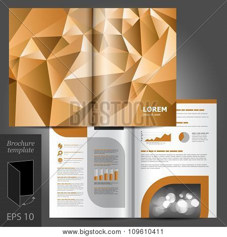 Brochure Template Design With Origami Paper Elements