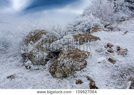 Frozen stones in winter forest