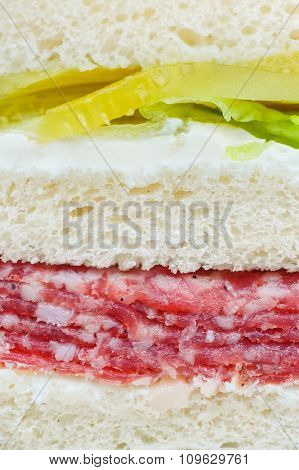 carpaccio raw meat and vegetables sandwich, closeup with layers visible