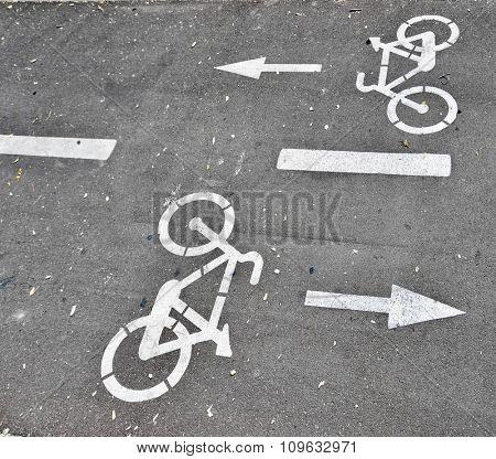 Designation bike lane on a street in Madrid