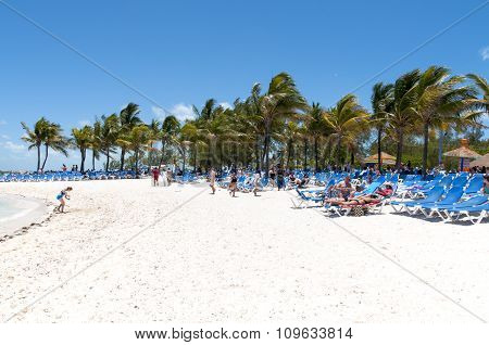Sandy Beach And Palm Trees