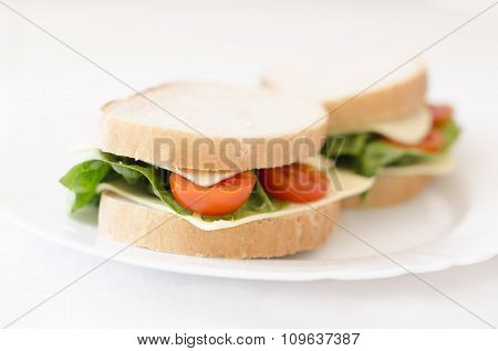sandwiches on a plate. Isolated background. Salad, cheese, tomatoes
