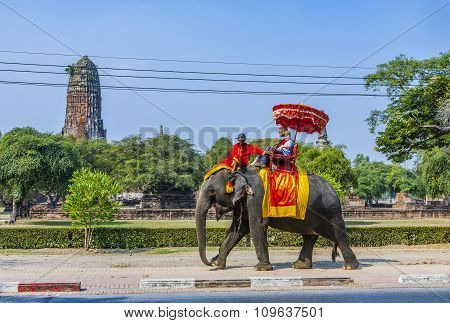 Tourists Ride On An Elephant In The Historical Park