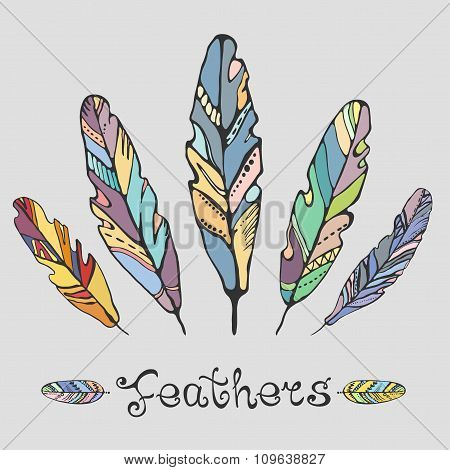 Hand Drawn Painted Feathers Set