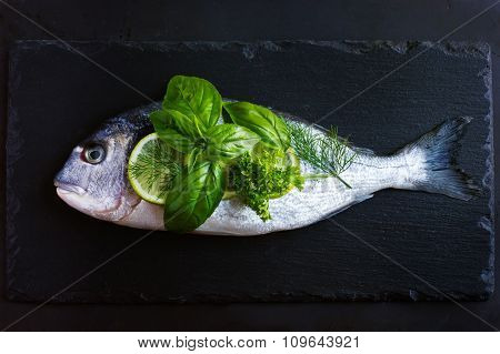 Fresh Raw Dorado Fish With Spicy Herbs