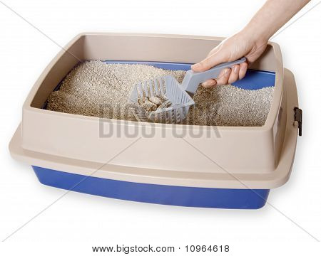 Cleaning Out Litter-box