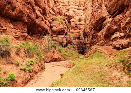 road with some grass in a valley of red sandstone