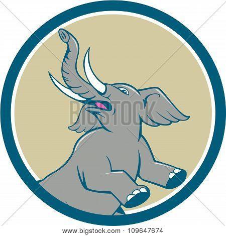 Elephant Prancing Circle Cartoon