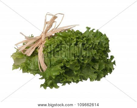 Green Lettuce Bouquet Laying On Side Isolated On White