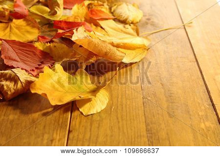 Red and yellow autumn leaves on wooden table, close-up