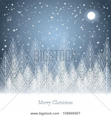Winter Forest Under The Moon On Christmas Postcard Background.