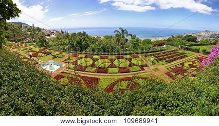 Panoramic View Of Tropical Botanical Garden In Funchal City, Madeira Island, Portugal