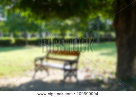 Blurry Defocused Image Of Wooden Bench Under Big Tree
