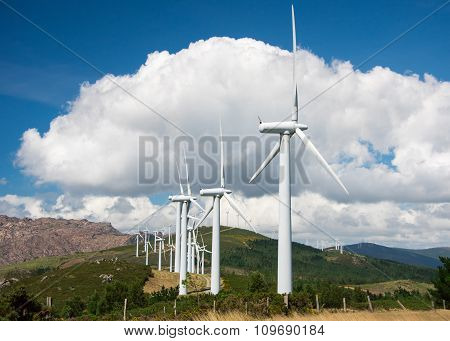 Windmill powered plant on hill