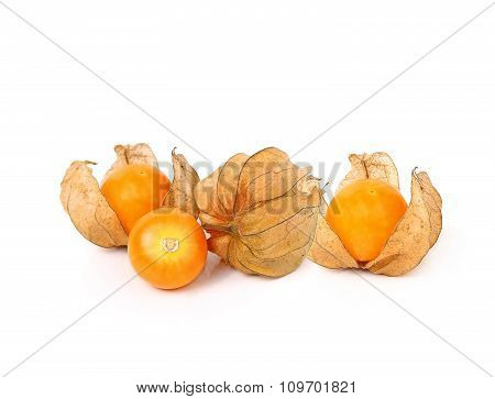 Cape Gooseberry (physalis) Isolated On White Background
