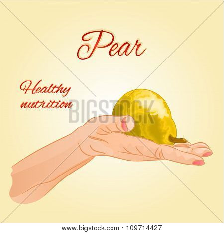 Pear  In The Palm Of Healthy Nutrition Vector